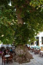 Pyrgos Tinos   Greece   Fotto 35 - Photo JustGreece.com