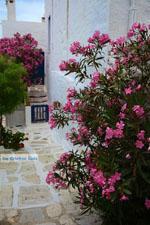 JustGreece.com Pyrgos Tinos | Greece | Fotto 48 - Foto van JustGreece.com