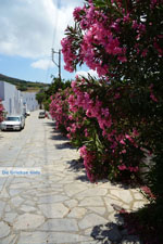 JustGreece.com Steni Tinos | Greece | Photo 13 - Foto van JustGreece.com