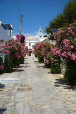 JustGreece.com Steni Tinos | Greece | Photo 15 - Foto van JustGreece.com