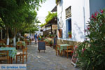 JustGreece.com Volax | Volakas Tinos | Greece Photo 10 - Foto van JustGreece.com
