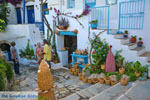 JustGreece.com Volax | Volakas Tinos | Greece Photo 16 - Foto van JustGreece.com