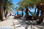 Vai Crete | Lassithi Crete | Greece  Photo 6 - Photo JustGreece.com