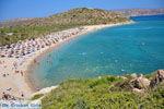 Vai Crete   Lassithi Crete   Greece  Photo 15 - Photo JustGreece.com