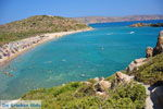 Vai Crete | Lassithi Crete | Greece  Photo 16 - Photo JustGreece.com