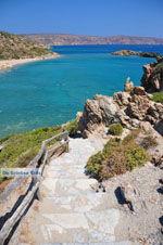 Vai Crete | Lassithi Crete | Greece  Photo 35 - Photo JustGreece.com