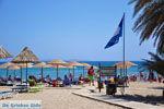Vai Crete | Lassithi Crete | Greece  Photo 55 - Photo JustGreece.com