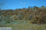 The mooie nature of Florina | Macedonia Greece | Photo 3 - Photo JustGreece.com