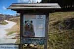 Arktouros protection of wild animals | Florina | Macedonia - Photo JustGreece.com