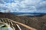 The Lakes of Prespes | Florina Macedonia | Greece Photo 8 - Photo JustGreece.com