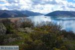 Prespes Lakes | Florina Macedonia | Greece Photo 12 - Photo JustGreece.com