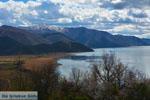 The Lakes of Prespes | Florina Macedonia | Greece Photo 34 - Photo JustGreece.com