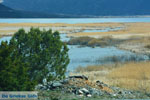 Near the Lakes of Prespes | Florina Macedonia | Greece Photo 50 - Photo JustGreece.com