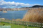 Kastoria | Macedonia Greece | Photo 12 - Photo JustGreece.com