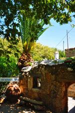 Zakros and Kato Zakros - Crete - Greece  12 - Photo JustGreece.com
