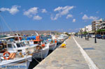 Karystos Euboea | Greece | Photo 7 - Photo JustGreece.com