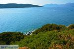 beach Zastani | Marmari Euboea | Greece | Photo 15 - Photo JustGreece.com