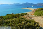 JustGreece.com Golden beach Euboea | Marmari Euboea | Greece Photo 14 - Foto van JustGreece.com