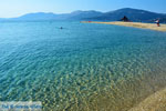 JustGreece.com Golden beach Euboea | Marmari Euboea | Greece Photo 17 - Foto van JustGreece.com