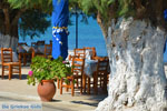 Marmari Euboea | Greece | Photo 15 - Photo JustGreece.com