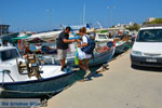 Marmari Euboea | Greece | Photo 21 - Photo JustGreece.com