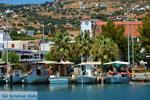 Marmari Euboea | Greece | Photo 39 - Photo JustGreece.com