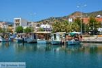 JustGreece.com Marmari Euboea | Greece | Photo 40 - Foto van JustGreece.com