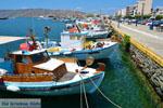 Karystos Euboea | Greece | Photo 49 - Photo JustGreece.com