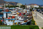 JustGreece.com Karystos Euboea | Greece | Photo 58 - Foto van JustGreece.com