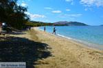 beach Kokkini | Marmari Euboea | Greece Photo 7 - Photo JustGreece.com