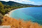 JustGreece.com beach Kokkini | Marmari Euboea | Greece Photo 17 - Foto van JustGreece.com