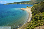 beach near Kokkini | Marmari Euboea | Greece Photo 19 - Photo JustGreece.com