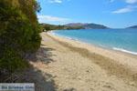 beach Kokkini | Marmari Euboea | Greece Photo 27 - Photo JustGreece.com