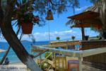 beach Kokkini | Marmari Euboea | Greece Photo 37 - Photo JustGreece.com