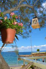 beach Kokkini | Marmari Euboea | Greece Photo 38 - Photo JustGreece.com