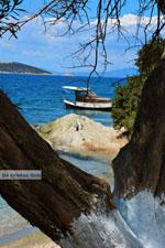 beach Kavos | Marmari Euboea | Greece Photo 7 - Photo JustGreece.com