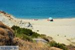 JustGreece.com Near Golden beach Euboea | Marmari Euboea | Greece Photo 25 - Foto van JustGreece.com