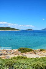 Near Golden beach Euboea | Marmari Euboea | Greece Photo 45 - Photo JustGreece.com