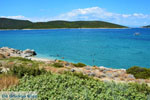 Near Golden beach Euboea | Marmari Euboea | Greece Photo 59 - Photo JustGreece.com