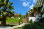 Hotel Marmari Bay | Marmari Euboea | Greece Photo 18 - Photo JustGreece.com