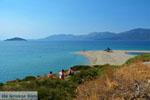 JustGreece.com Near Golden beach Euboea | Marmari Euboea | Greece Photo 79 - Foto van JustGreece.com