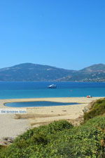 Near Golden beach Euboea | Marmari Euboea | Greece Photo 82 - Photo JustGreece.com