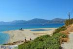 JustGreece.com Near Golden beach Euboea | Marmari Euboea | Greece Photo 83 - Foto van JustGreece.com