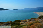Near Golden beach Euboea | Marmari Euboea | Greece Photo 92 - Photo JustGreece.com