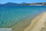 Near Golden beach Euboea | Marmari Euboea | Greece Photo 112 - Photo JustGreece.com