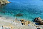 beach Zastani | Marmari Euboea | Greece | Photo 17 - Photo JustGreece.com